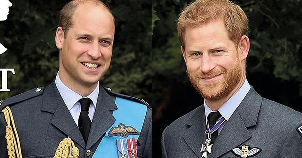 Principe Harry e William, ancora contrasti? Una fonte ci svela tutto