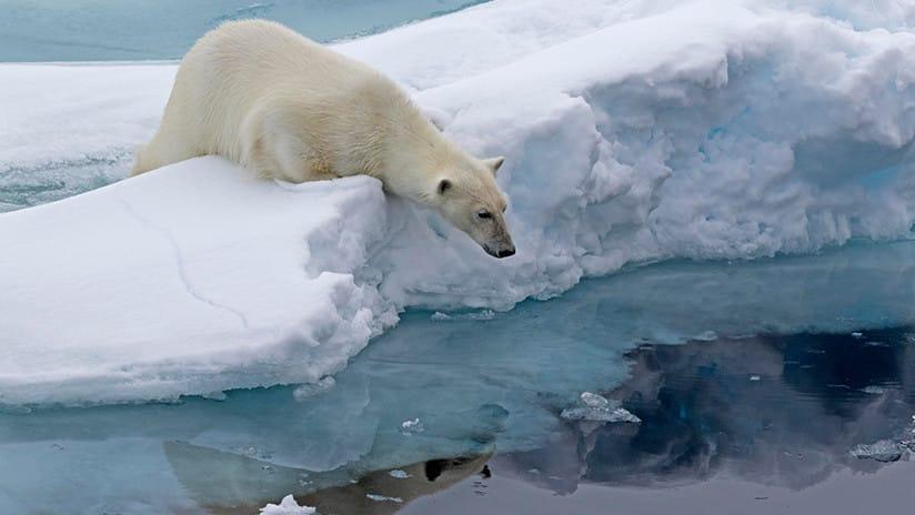 Accade qualcosa di strano con il Polo Nord e nessuno sa perché