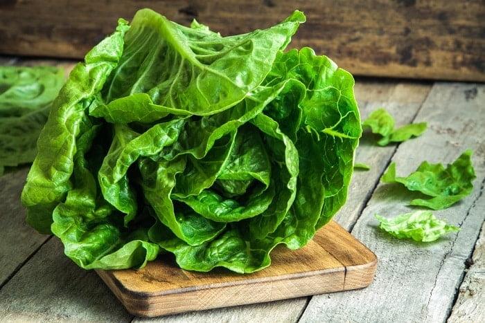 Mangiare la lattuga prima dei pasti fa perdere peso? Ecco come stanno le cose